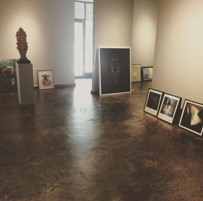 Reflector, installation view