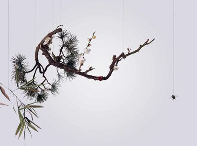 Hong Lei, 'Speak, Memory of Plum Blossoms 說吧, 記憶臘梅', 2005