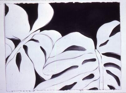 Ellen Chuse, 'White Leaves II', 1984