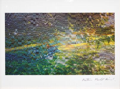 Mathieu Merlet Briand, '#Nature #85', 2019