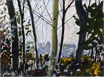 Leslie Poole, 'Fall Silhouette 2', 2013