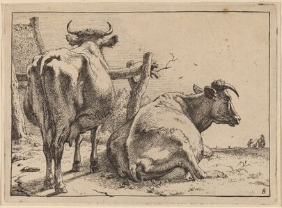 Paulus Potter, 'Two Cows Seen from Behind', 1650
