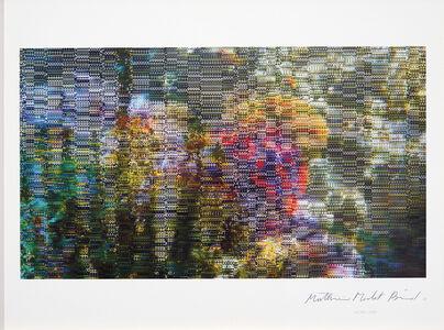 Mathieu Merlet Briand, '#Nature #91', 2019
