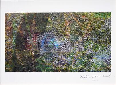 Mathieu Merlet Briand, '#Nature #62', 2019