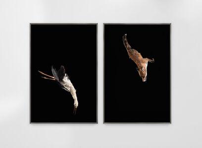 Julius von Bismarck, 'Tiere sind Engel mit Fell Delta', 2018