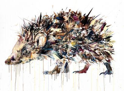 Dave White, 'Hedgehog', 2016