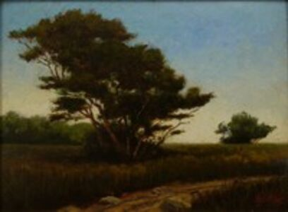 Homer Dodge Martin, 'Trees in a Field', 1875