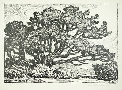 Birger Sandzén, 'Pines and Mountains (Pines and Foothills)', 1922