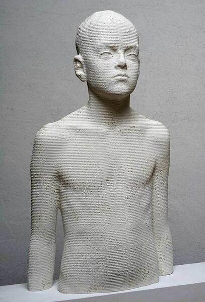 Bruno Walpoth, 'Janlück', 2019