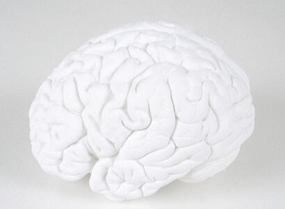 Katharina Fritsch, 'Gehirn (Brain)', 1987-1989