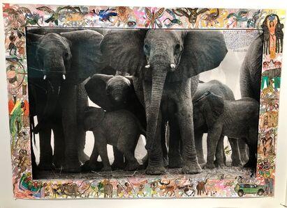 Peter Beard, 'Eles at Buffalo Springs', 1960/2012