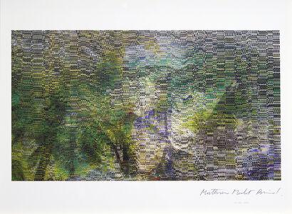 Mathieu Merlet Briand, '#Nature #73', 2019