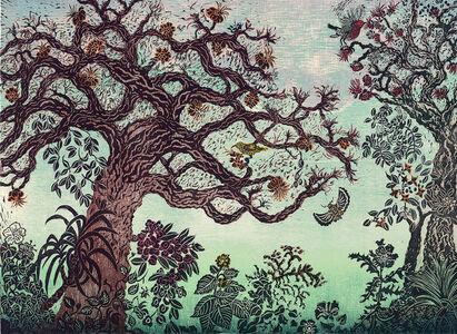 Andrea Pro, 'The Magical Wiliwili Forest', 2015