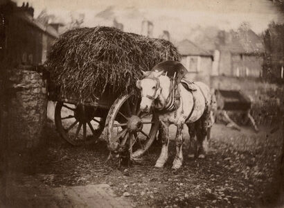 John Bevan Hazard, 'Work Horse and Hay Cart, Bristol, U.K.', 1850s/1850s
