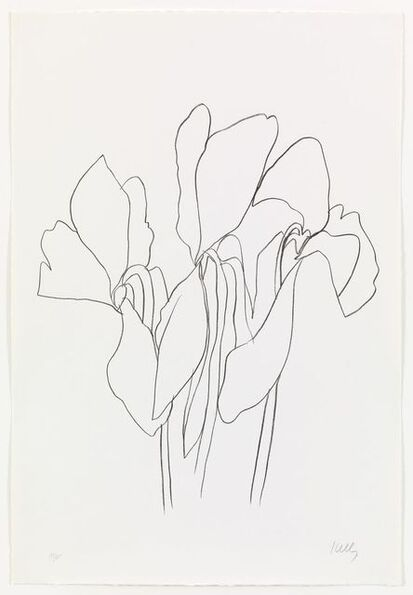 Ellsworth Kelly, 'Cyclamen V', 1965