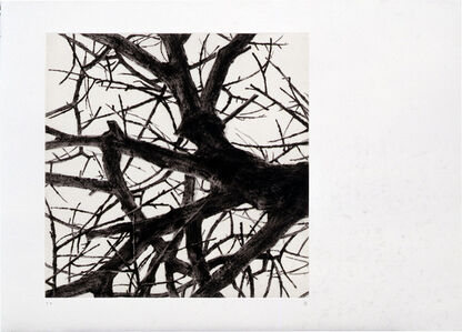 Rieko Hidaka, 'From the Space of Trees - a', 2001