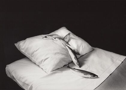 Michiko Kon (今 道子), 'Mackerel & Pillow', 1979