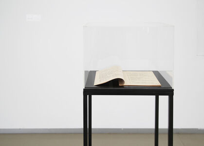 Zhang Peili, 'Artist Project No. 2', 1987