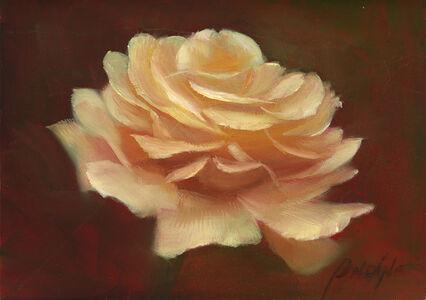 Patt Baldino, 'A Rose', 2019