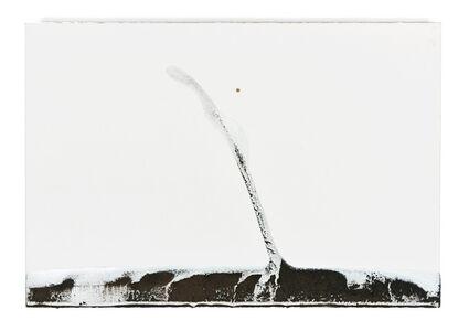 Teresa Pereda, 'Water Drawings series', 2008