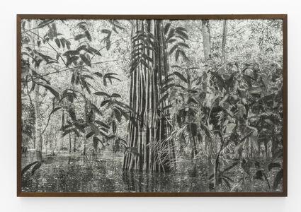Cassio Vasconcellos, 'A picturesque voyage through Brazil # 16  ', 2015