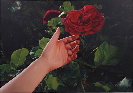 Mustafa Hulusi, 'Untitled (Red Rose and Hand)', 2005
