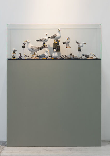 Guillaume Bijl, 'Sorry', 2015