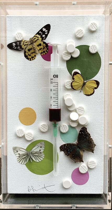 Damien Hirst, 'Fun', 2008, Mixed Media, Syringe needle, synthetic resin, butterflies, paracetamol pills and household gloss on canvas, Artsy x Seoul Auction