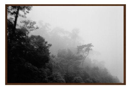 Maria Laet, 'Neblina (Fog)', 2014