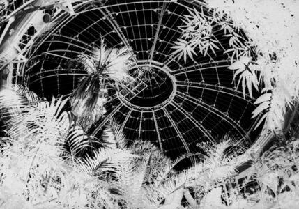 Penelope Stewart, 'Terminus IV, photo on glass', 2015