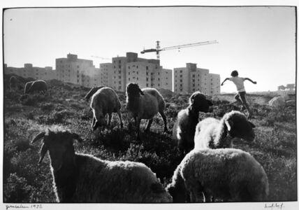 Marc Riboud, 'Untitled (Jerusalem)', 1972