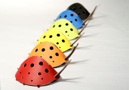 vacaValiente, 'Lady Bug', 2008