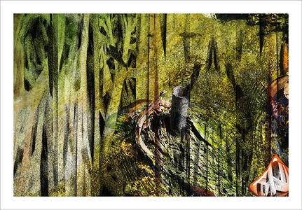 Kathleen J Graves, 'Dark Garden #15', 2014
