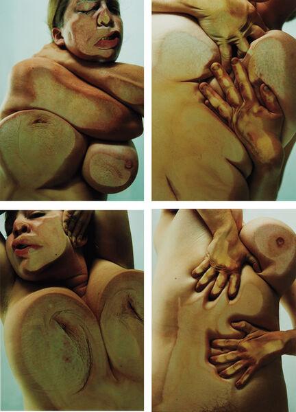 Jenny Saville & Glen Luchford, 'Closed Contact A-D', 2002