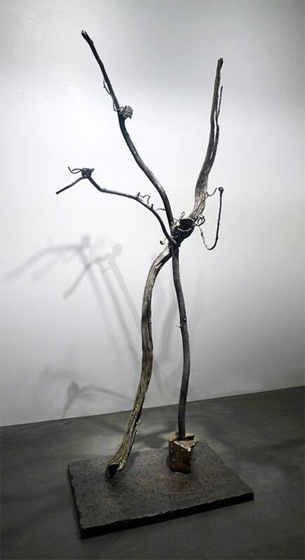 Carolyn Olbum, 'Metamorphose I', Sculpture, Cast Bronze, Gail Severn Gallery