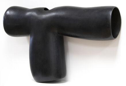 Peter Shelton, 'onelongsleeve', 1987-1990