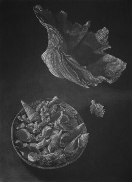 Judith Rothchild, 'Pacifique Sud', 2016