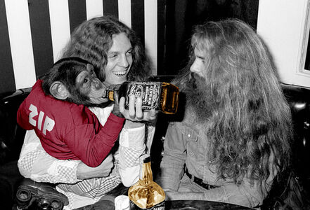 Richard E. Aaron, 'Lynyrd Skynyrd's Allen Collins with Roller Skating Monkey with Jack Colorized'