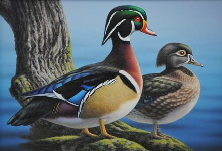 Ron Louque, 'Wood Ducks', 2009