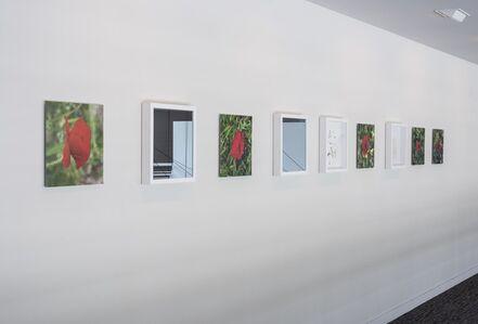 Megumi Matsubara, 'It Is a Garden', 2016