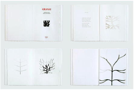 Christiane Löhr, 'GRANAI, Eleven ink drawings by CHRISTIANE LÖHR, Ten unpublished poems by MARIA LUISA SPAZIANI', 1999