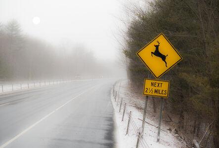 Ken Tannenbaum, 'Deer Crossing with Red Nose', 2015