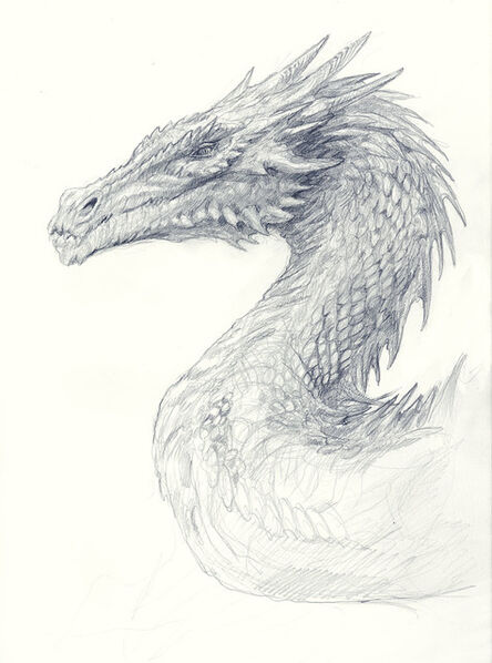 Matthew Stewart, 'Dragon Study', 2019