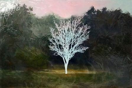 Peter Hoffer, 'Autumn no. 2', 2018