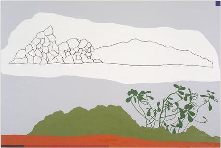 Mariana Serri, 'from the series Topográfica (Clusia)', 2014