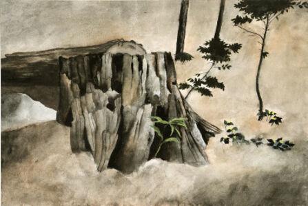 Carolyn Wyeth, 'Untitled (Wildflowers and Cut Tree)'