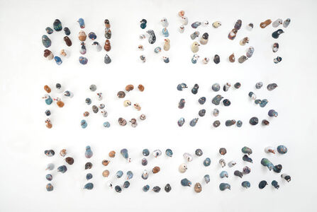 Elisabeth Lincot, 'We are not pigeons', 2019