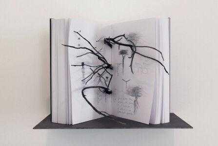 Marisa Albanese, 'Book #1', 2016