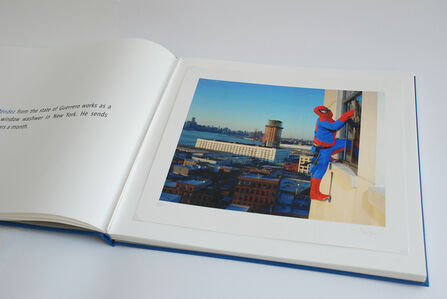 Dulce Pinzon, 'The real story of the Superheroes', 2017-2010