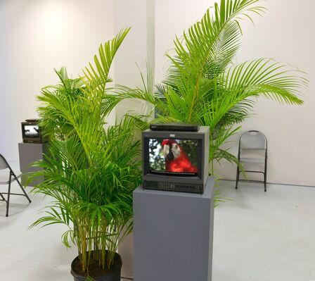 IRL Institute at Moving Image New York 2016, installation view